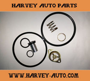 Hv-Rk11 Repair Kit for Qr-1 Quick Release Valve pictures & photos