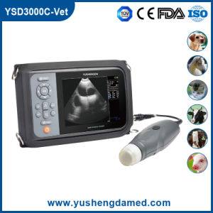 Ysd3000c-Vet Veterinay Palmtop Digital Ultrasound pictures & photos