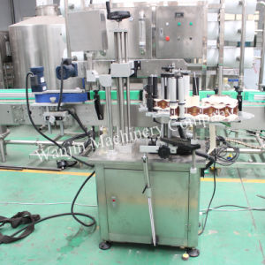 Automtic Self-Adhesive Single Side Labeling Machinery pictures & photos