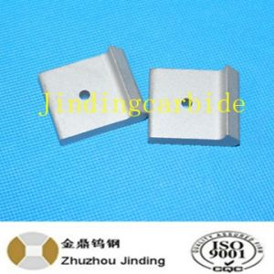 Special Tungsten Carbide Inserts Tip for Tamping Tines pictures & photos