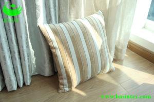 Stripe Velvet Sofa Fabric (BS4005) pictures & photos