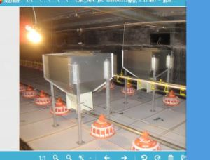High Quality Poultry Feeding Equipment pictures & photos