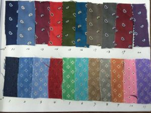 Latest Paisely Flower Design Micro Fibre Fabric Necktie pictures & photos