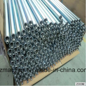 Customized Sprocket Stainless Steel Accumulating Roller for Conveyor pictures & photos