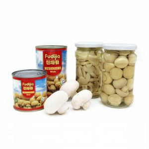 Canned Mushroom with High Quality pictures & photos