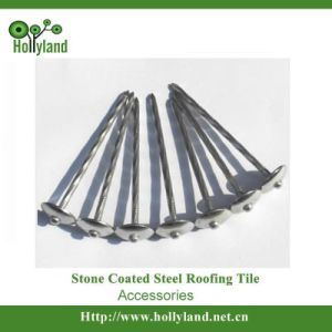 Low Carbon Steel Roofing Nail for Roofing Construction pictures & photos