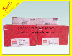 Original Chinese Mahle Valves for Isuzu Excavator Engine 6bg1t Made in China with High Quality pictures & photos