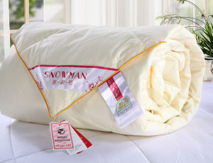 80% White Duck Down Air Conditioner Quilt for Summer pictures & photos
