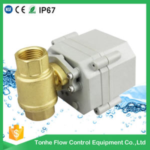Water Leaking Detection System with Motorized Shut off Valve (T20-S2-C) pictures & photos