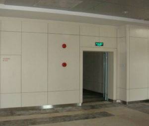 Waterproof Interior Wall Cladding Texture Panel pictures & photos