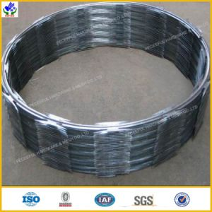 Bto-22 Concertina Razor Wire Manufacturer pictures & photos