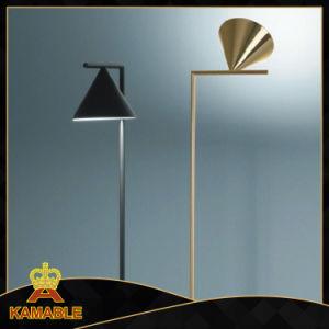 High Class Home Goods Floor Lighting (KAF6062) pictures & photos