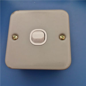 Metal Material Single Wall Switch (W-073) pictures & photos