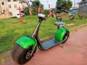 2016 Hot Sale Electric Motorcycle Bike 1000W pictures & photos