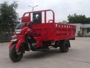 Double Rear Wheeled Cargo Tricycle in Peru pictures & photos