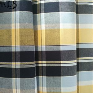 100% Cotton Poplin Woven Yarn Dyed Fabric for Shirts/Dress Rlsc40-6 pictures & photos