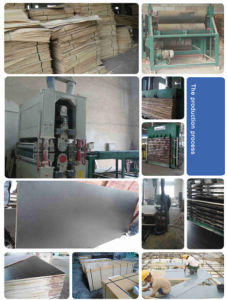 Supply Anti-Slip Film Faced Plywood pictures & photos