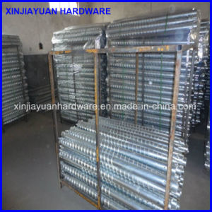 Galvanized Pole Anchor, Ground Screw for City Fence pictures & photos