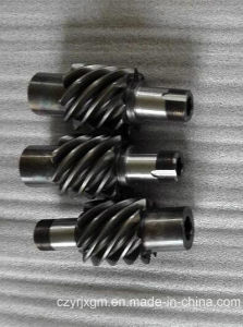 Worm Gear pictures & photos