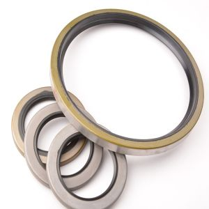 Tb Tg Tc Abrasion Resistant Oil Seal pictures & photos