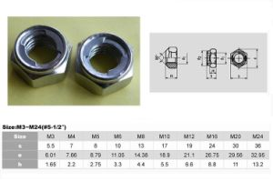 All- Metal Lock Hex Nuts (Type M DIN980 M) pictures & photos