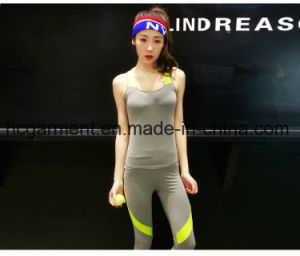 Women Fashion Sports Suit, Sports Top, Gym Clothing pictures & photos