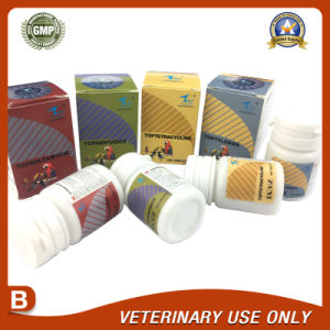 Veterinary Drugs of Gentamycin sulfate Bolus 100 tabs pictures & photos