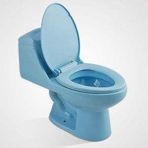 New Tide Ceramic with Tank Fittings Standing Blue Color Toilet
