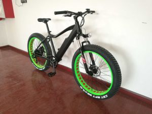 Fat Tire Electric Bike Bicycle with Middle Mounted Motor pictures & photos