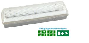 IP65 Rechargeable Battery Operated Maintained SMD LED Emergency Light pictures & photos