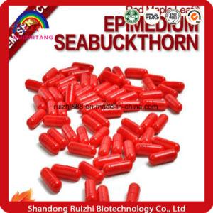 Gmmp Factorysupply Best Quality Epimedium Extract Capsules pictures & photos