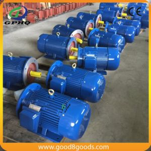 Y 15kw B5 Flange Asynchronous Motor pictures & photos