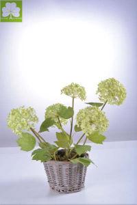 Hydrangea in Rattan Basket of Plastic Flowers