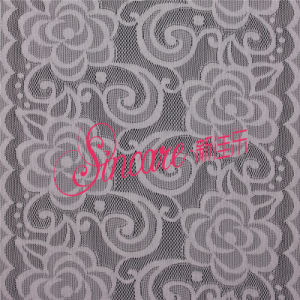 New Design Fashion Mesh Lace Fabric for Garment and Lingerie Embroidered Lace Fabric