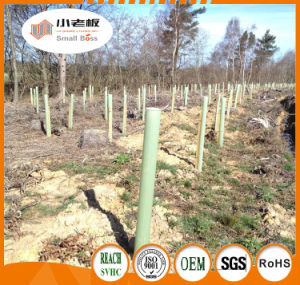 Outdoor Tree Protectors/Plant Tree Guards pictures & photos