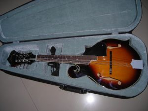 F-Type Mandolin for Professnial Play pictures & photos