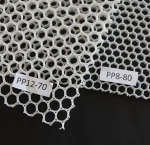 Light Weight Stiffness Strength PP Honeycomb Sheet pictures & photos