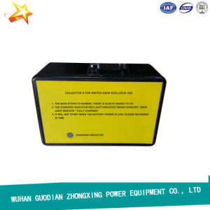 Wireless GPS Phasing Tool Very Long Distance High Voltage live line Phasing Test Set pictures & photos