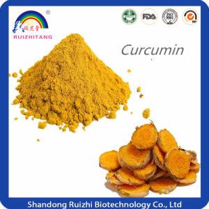 Turmeric Extact Powder Curcumin pictures & photos