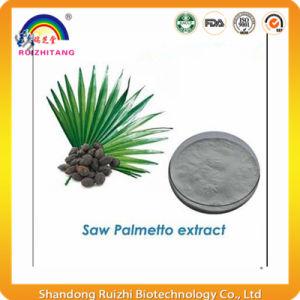 Nature Bulk Saw Palmetto P. E. pictures & photos