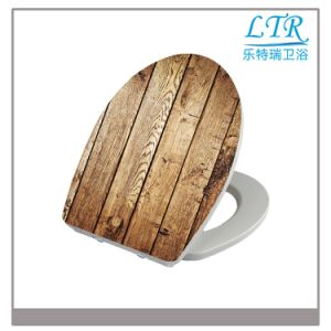 Round Cheap Elongated PP European Standard Wc Soft Close Toilet Seat Cover pictures & photos