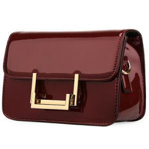 Patent Famous Brand Similar Designer Leather Handbag pictures & photos
