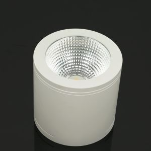 Three Year Warranty LED Ceiling Light 40W Surface Mounted LED Downlight pictures & photos