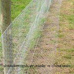 Sailin Galvanized Wire Netting Hexagonal Mesh pictures & photos