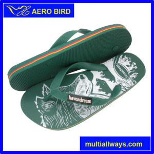 Fashion PE Slipper with Cool Tiger Print for Male pictures & photos