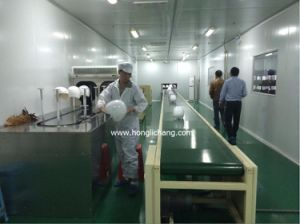 Robot Dustfree Automatic Coating Plant for Helmets pictures & photos