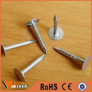Hot Dipped Galvanized Ceiling Roofing Nails pictures & photos