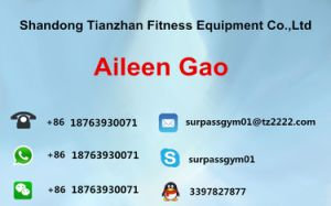 Commercial Gym Equipment/Abdominal Exercise Machines/ Back Extension Tz-9006 pictures & photos