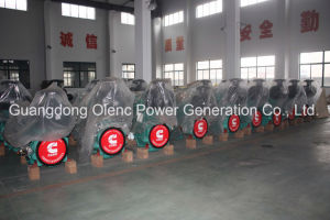 Guangdong Olenc Power Generator Company with TUV/SGS/Ce/ISO Certificate pictures & photos