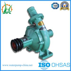 CB50-50-150 Diesel Water Pump of Two Inch pictures & photos